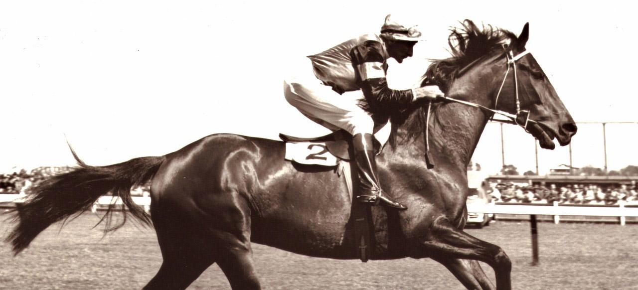 Un caballo más rápido